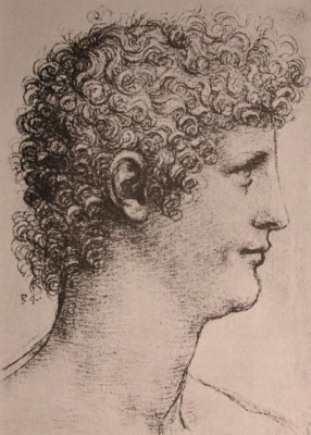 Leonardo da Vinci. Profile Salai