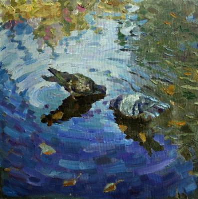 Михаил Рудник. Study with pigeons