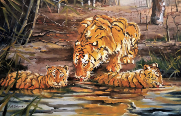 Aleksandr Evgenevic Grigorev. Амурские котятки