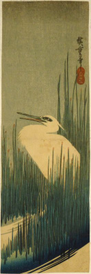 """Utagawa Hiroshige. Egret in the reeds. Series """"Birds and flowers"""""""