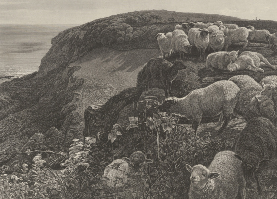 William Holman Hunt. Sheep on the English coast