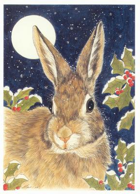 Уолтерс Цзин. Кролик