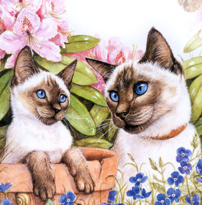 Дебби Кук. Коты у забора