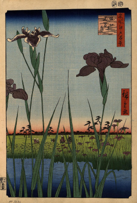 "Utagawa Hiroshige. Irises in Horikiri. The series ""100 famous views of Edo"""