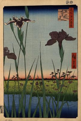 """Утагава Хиросигэ. Ирисы в Хорикири. Серия """"100 знаменитых видов Эдо"""""""