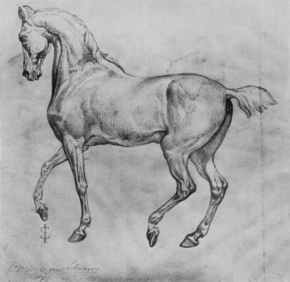 Юлиус Шнорр фон Карольсфельд. Гарцующая лошадь