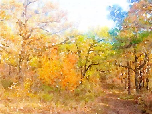 Valery Ilyichev. Autumn