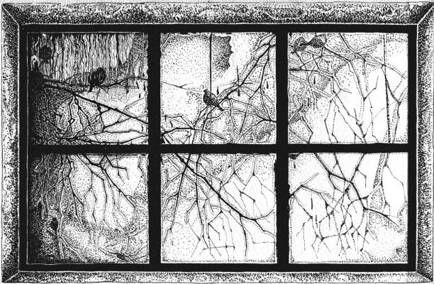 Svetlana Sergeevna Malyodnik. Window