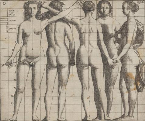 Самюэл ван Хогстратен. Введение в высшую школу живописи. Фигура женщины