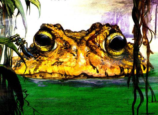 Рут Браун. Жаба