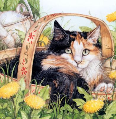 Дебби Кук. Трехцветный кот
