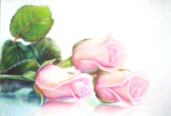 Sophie Wasilewska. Рожеві троянди