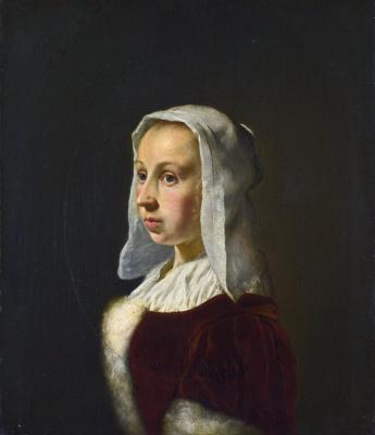 Франц ван Мирис Старший. Портрет жены художника