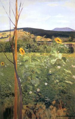 Jacek Malchevsky. Sunflowers