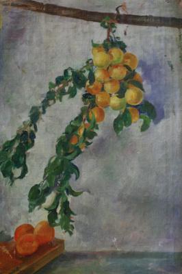 Nikolay Ivanovich Shestopalov. Branch with peaches. 1920s