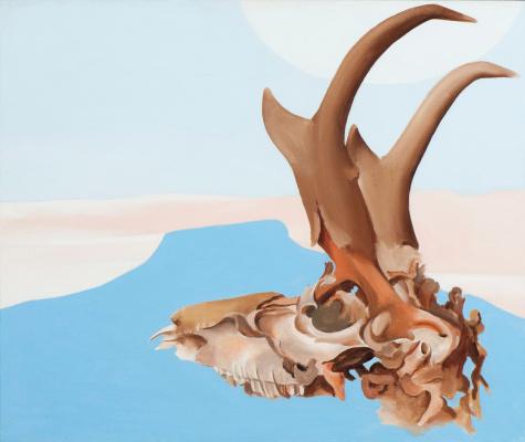 Georgia O'Keeffe. The antelope skull