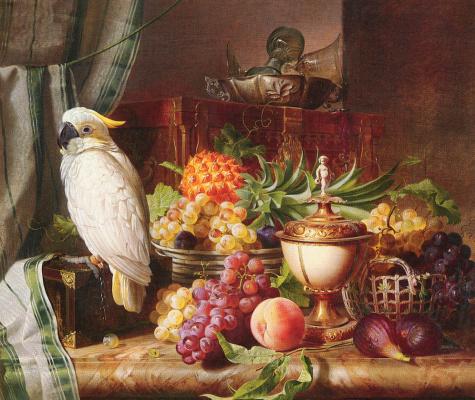 Йозеф Шустер. Натюрморт с фруктами и какаду