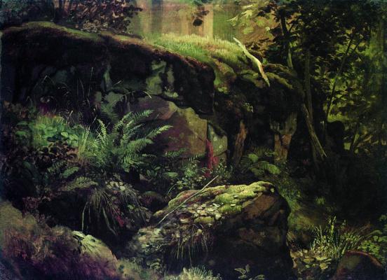 Иван Иванович Шишкин. Камни в лесу. Валаам