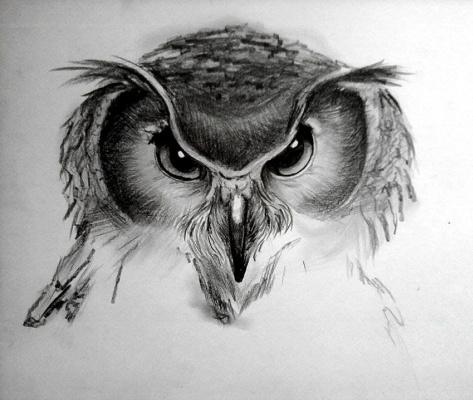 Varvara Nikolaevna Ivanova. Owl