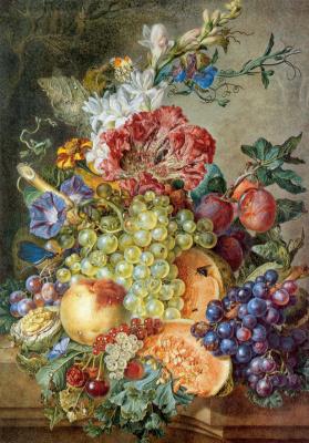 Gerrit van Liuwen. Still life with grapes