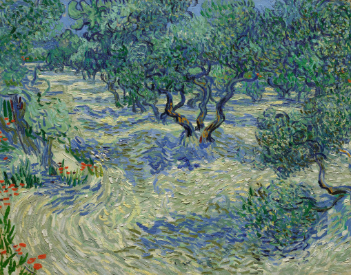 Vincent van Gogh. Plantation of olive