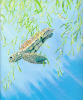 Джейн Чапман. Одна крошечная черепаха