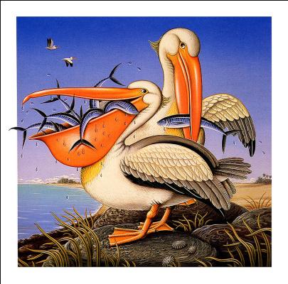 Джеймс Марш. Пеликаны