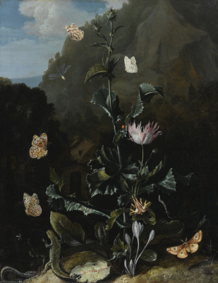 Otto Marceus van Scriec. Still life with a thistle and other flowers, with a moth, dragonfly, a lizard and a snake in a landscape