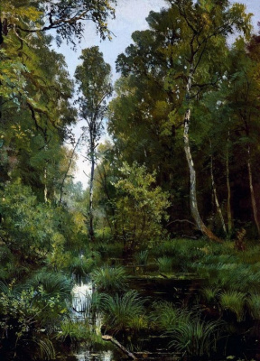 Ivan Ivanovich Shishkin. Overgrown pond at the edge of the forest. Siverskiy