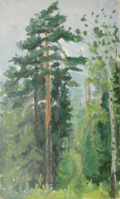 Nina Vasilievna Sedova. Pines