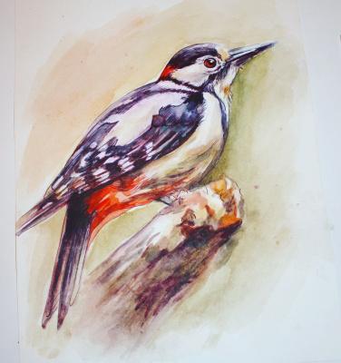 Veronica Oparina. Woodpecker