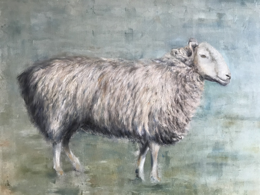 Oksana Viktorovna Sokolova. Sheep