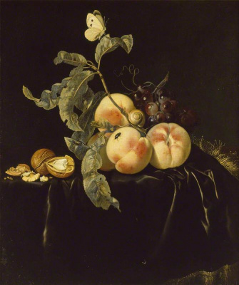 Виллем ван Алст. Натюрморт с фруктами