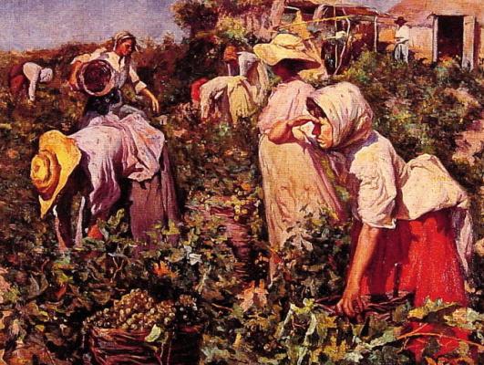 Федерико Годой Кастро. Сбор винограда