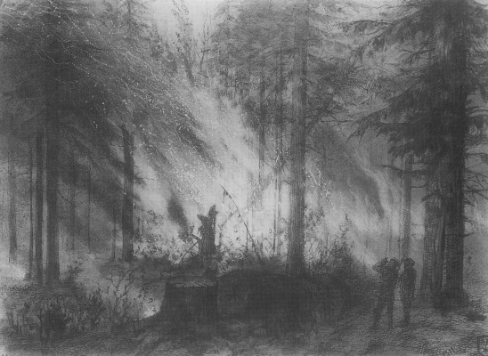 Василий Дмитриевич Поленов. Пожар в сухой кобре