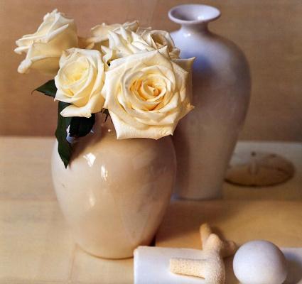 Мария Робледо. Белые розы