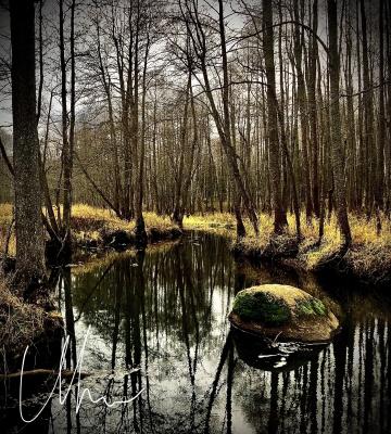 Nachtuhu. Vorona-river