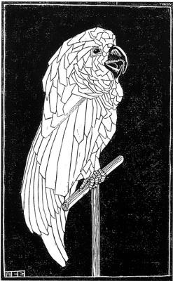 Мауриц Корнелис Эшер. Попугай