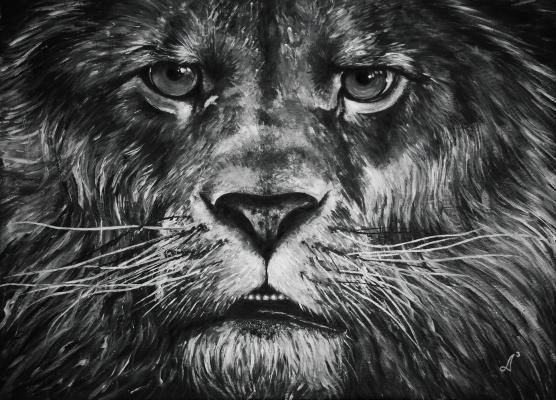Анастасия Андреевна Ашунина. The king of the animals