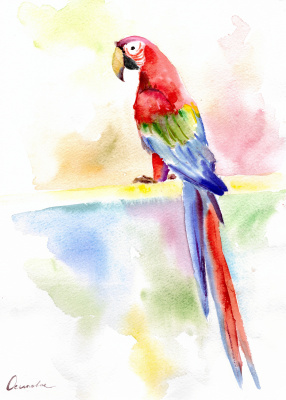 Ekaterina Viktorovna Mitrofanova. Macaw