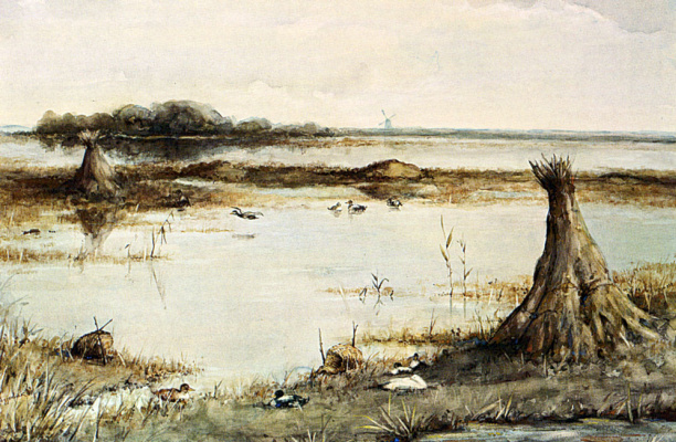 Гео Поггенбик. Пейзаж с утками