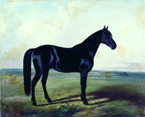 Nikolay Egorovich Sverchkov. Black horse.