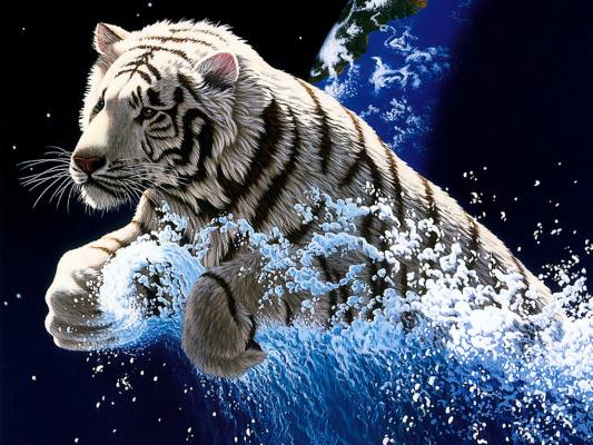Уильям Шиммел. Тигр на волне