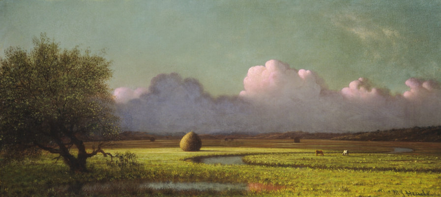 Martin Johnson Head. Sunlight and Shadow: Newbury Marshes