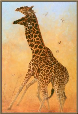 Джон Банович. Два жирафа