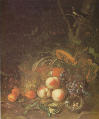 Rachelle Ruysch. Fruit still life with bird's nest and America