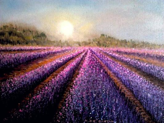 Cristina de biasio. Lavender