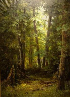Kondrat Evdokimovich Maksimov. Linden forest