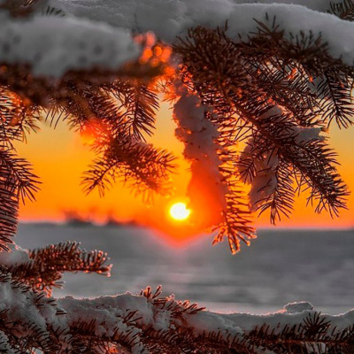 Arksinus long lord second name Polzovatel. Winter sunset 2