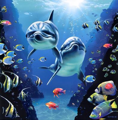 Ройс Макклюр. Дельфины 18